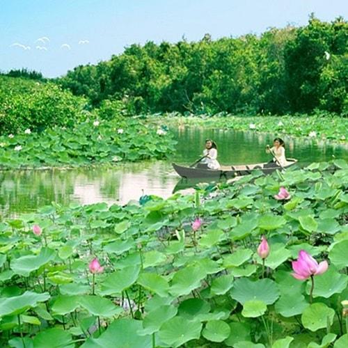 chuyen-nha-gia-re-dong-thap.jpg